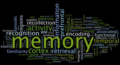 memory-word-cloud